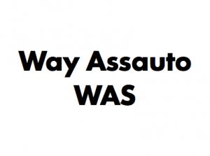 Way Assauto
